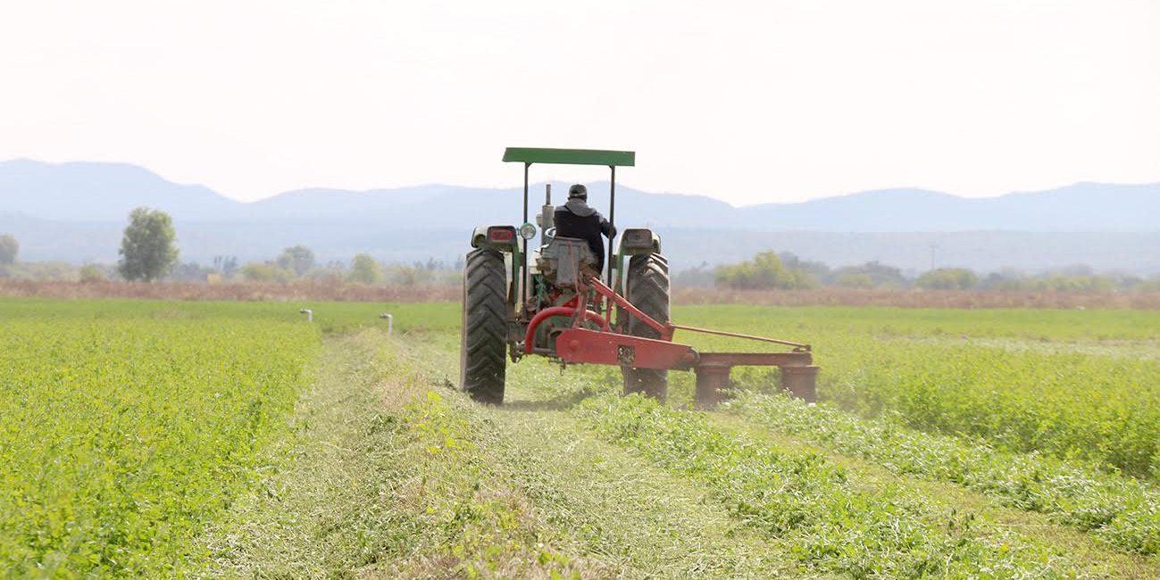 Las Zonas Rurales Son Clave Para El Crecimiento Económico